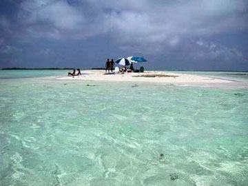 los roques small island