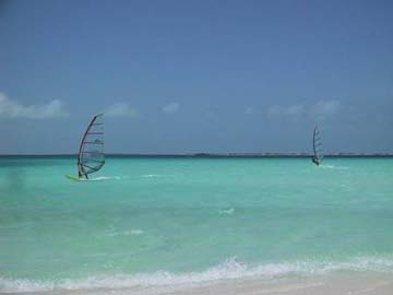 beach at los roques